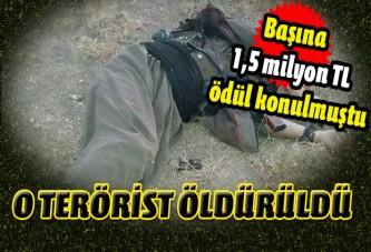 1,5 milyon TL ödülle aranan PKK'lı öldürüldü