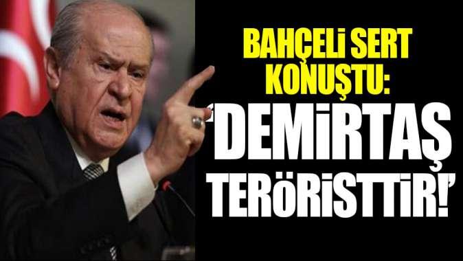 Bahçeli sert konuştu: Demirtaş teröristtir!