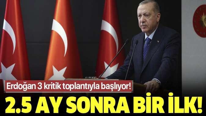 Başkan Erdoğan, normalleşme adımları kapsamında çalışmalarına artık Ankara'da devam edecek