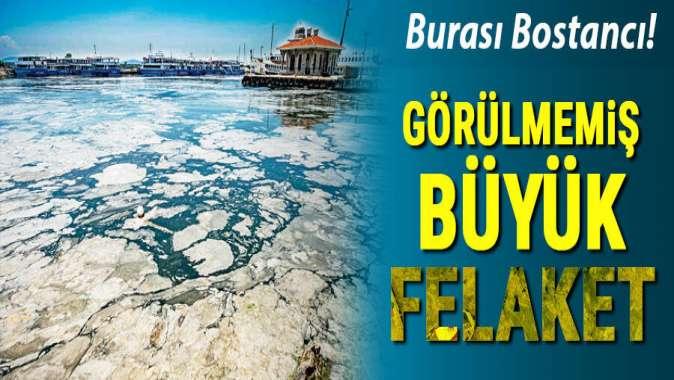 Deniz salyası sonrasında Marmara'nın tükenişi! 'Ölü deniz haline geldi!