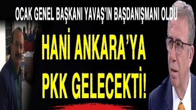 Hani Ankara'ya PKK'lılar gelecekti?