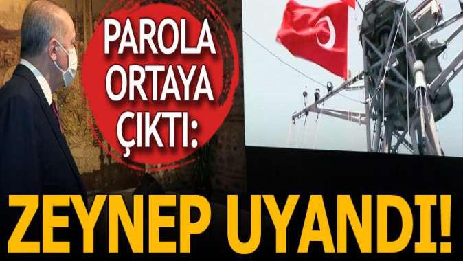 Karadeniz'deki gaz müjdesinin parolası belli oldu: Zeynep uyandı