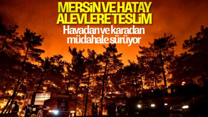 Mersin ve Hatayda orman yangını