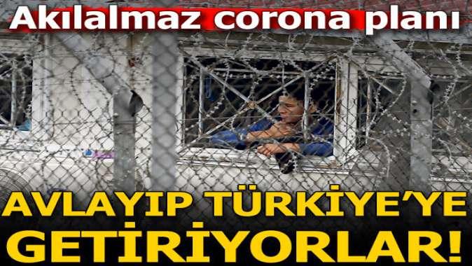 Önce avlıyorlar sonra Türkiye'ye yolluyorlar!
