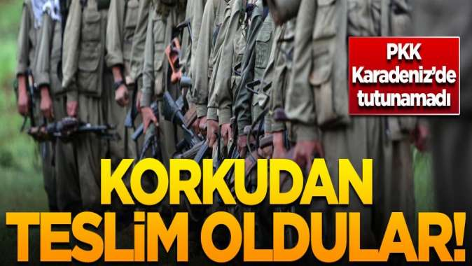 PKK Karadenizde tutunamadı! Korkudan teslim oldular