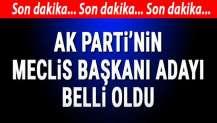 AK Parti'nin Meclis Başkanı adayı Mustafa Şentop...