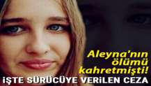 Aleyna'nın ölümü kahretmişti! İşte sürücüye verilen ceza