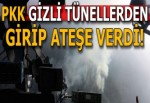 Amanos'lardaki ormanları PKK yakıyor