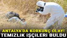 Antalya'da korkunç olay! Temizlik işçileri buldu...