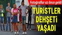 Antalya'da turistleri taşıyan midibüse TIR çarptı: Çok sayıda yaralı