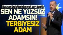 Başkan Erdoğan'dan çok sert tepki: Sen ne yüzsüz adamsın