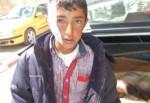Bitlis'te eve giren porsuk çocuğun yanağını kopardı