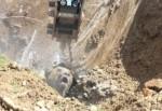 Bolu'da çukura düşen ayı 2 saatte kurtarılabildi