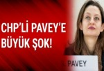 CHP'li Şafak Pavey'in twitter hesabı hacklendi!