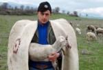 Çobanlara da sigorta prim desteği verilsin