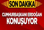 Erdoğan'dan AP'ye sert tepki!