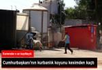 Erdoğanların kurbanı firar etti