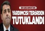 HDP Eş Genel Başkan Yardımcısı Alp Altınörs tutuklandı..