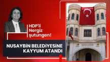 HDP'li Nergiz'in yerine Nusaybin Kaymakamı Mehmet Balıkçılar görevlendirildi