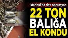 İstanbul'da dev operasyon! Yasal boy sınırı altında avlanan 22 ton balığa el konuldu