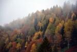 Karadeniz'de sonbahar bir başka