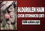 Öldürülen PKK'lı terörist cinsel istismarcı çıktı.