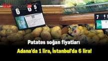 Patates soğan fiyatları Adana'da 1 lira, İstanbul'da 6 lira!