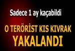 PKK'nın 'Tünelci teröristi' yakalandı!