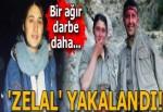 PKK'ya bir darbe daha! 'Zelal' yakalandı...
