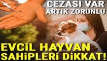 Resmi Gazete'de yayımlandı! Kedi, köpek ve gelincik sahipleri dikkat, cezası var