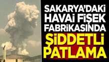 Sakarya'da şiddetli patlama!