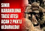 Sınır karakoluna ateş açan PKK/YPG'li 2 terörist öldürüldü