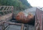 Sinop'ta 25o kilo ağırlığında denizaltı mayını bulundu