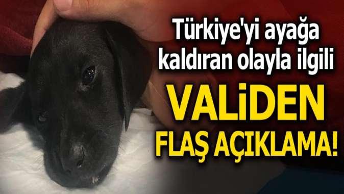 Türkiye'yi ayağa kaldıran olayla ilgili validen flaş açıklama